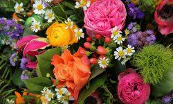 Български народен каледар: Празнуваме Цветница!